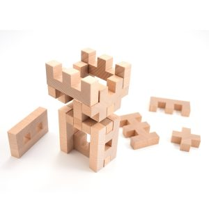 Blocks of different shapes which you can compose